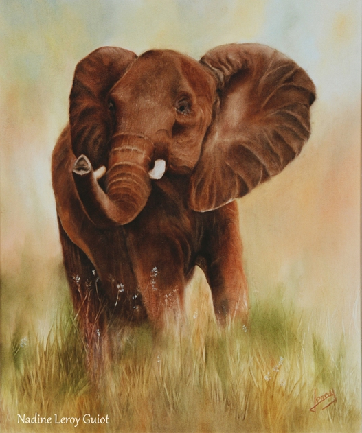 Eléphant Peinture à l'huile 46 x 38 cm