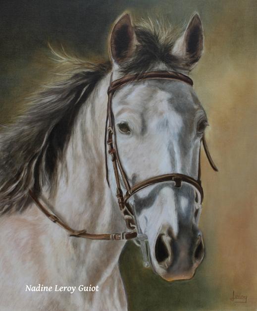 cheval harnais signé