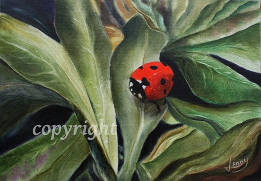 coccinelle copyright