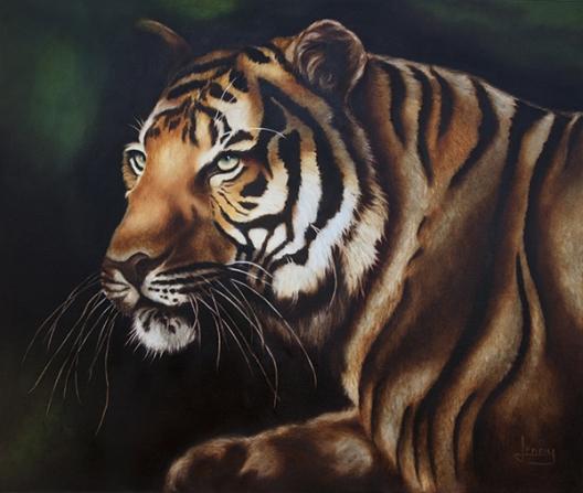 le tigre ombre et lumière -